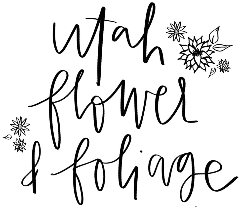 Utah Flower & Foliage